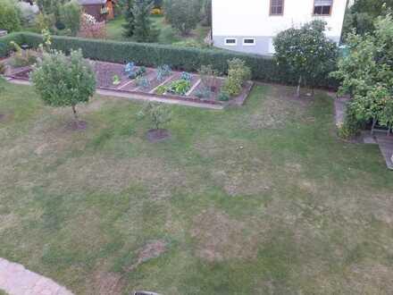 schnucklige Dachwohnung mit EBK, Balkon nur für Gartenliebhaber