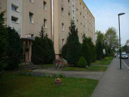Wunderschöne 4 Raum Wohnung in ruhiger Lage