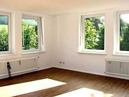 Renoviertes Appartement in Grafschaft/Schmallenberg