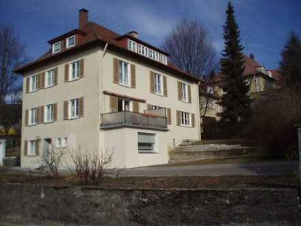 5-Zimmerwohnung im Herzen von Ochsenhausen