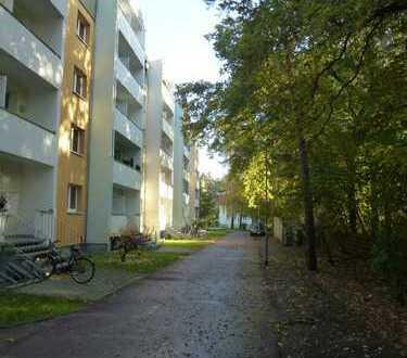 Schöne drei Zimmer Wohnung in Dessau-Roßlau, Roßlau