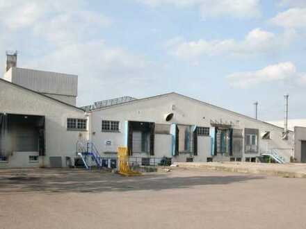 Lager-/ Produktionshalle