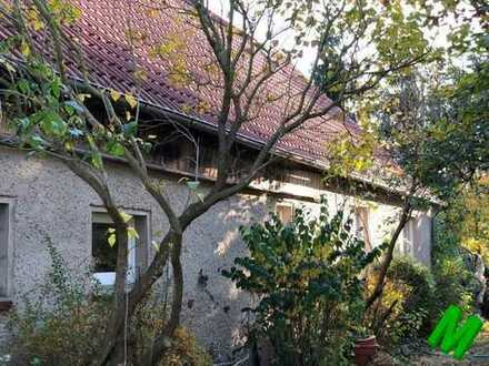 + Maklerhaus Stegemann + Einfamilienhaus mit Potenzial sucht neuen Besitzer