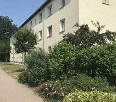 Erstbezug nach Sanierung sonnig und hell in Bad Lausick
