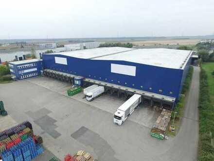 ***Moderne Logistikimmobilie € 3,40/m² VB im Alleinauftrag zu vermieten***