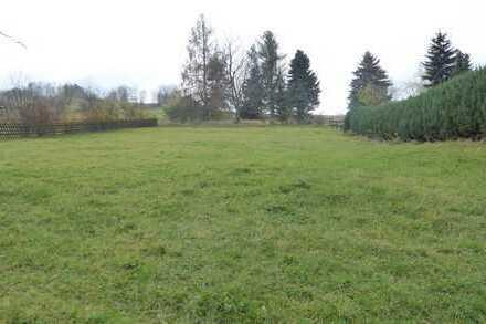 Grundstück in Thalheim