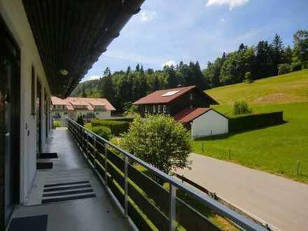Provisionsfrei & div. Renovierungen inklusive: Apartment mit Berg- & Seeblick