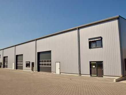 Provisionsfrei: Moderne Lagerhallen (ebenerdig und Rampe) mit Büro