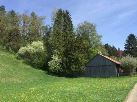 Freizeitgrundstück mit Scheune, Baumbestand in traumhaft schöner Lage