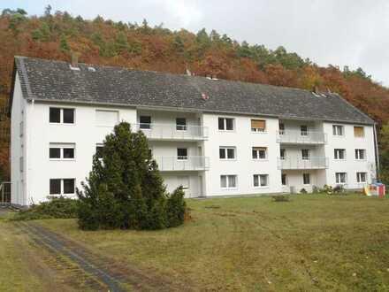 Renovierte Wohnung mit Blick ins Grüne (Viktoriastollen)