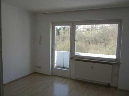 1 Zim. Appartment mit Balkon, Duschbad, Einbauküche € 240,- +100,- NK