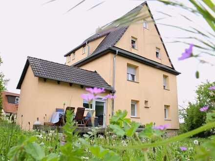 XXL-Anwesen, MFH, drei Wohnungen, Dachausbau, ca. 1000qm Grund, Doppelgarage, Kernsaniert 2007!