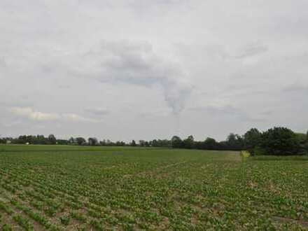 Ackergrundstück in Ergolding - Bereich B11 und B15