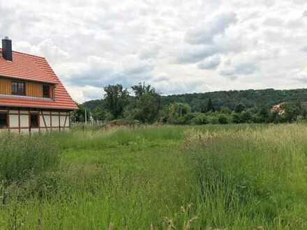 Traumhaftes Grundstück in ruhiger Lage in Sörnewitz