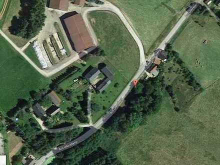 Ruhiges grünes Grundstück in Uhlsdorf!