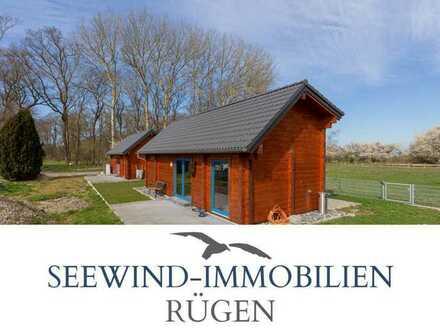 Sonniges Grundstück mit 2 Ferienhäusern und Bauplatz für ein Wohnhaus in Poggenhof vor Hiddensee