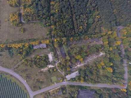 +++ Förderfähig - Gewerbe-Industriepark Waldpolenz - Top Lage vor den Toren von Leipzig +++