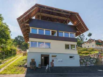 Schöne DHH in Toplage! Große Wohnung mit 2 Terrassen! Gut und günstig!