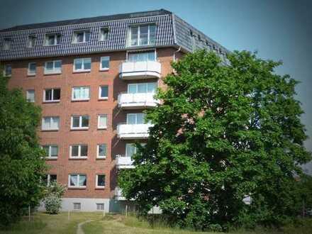 Gemütliche 1-Raum Wohnung mit Fahrstuhl sucht neuen Bewohner!