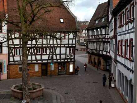 Komplett sanierte attraktive 3 Zi-Whg. im Zentrum Bensheim