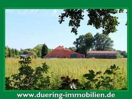 Bauernhaus mit vielen Nutzungsmöglichkeiten!