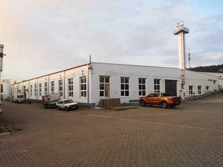 Hallenfläche mit 830 m2, Zufahrt Tor 4m Höhe, sofort frei