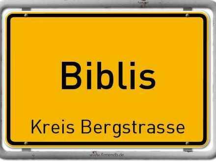 Haus mit fünf Zimmern in Bergstraße (Kreis), Biblis