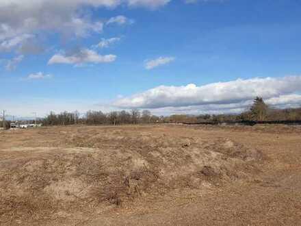 Entwicklungsgrundstück mit 10.000 m² in Neuenburg
