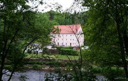 Provisionsfreies großzügiges Mühlenanwesen, Wohnhaus, Mühle, Wasserkraft, Insel, Garten