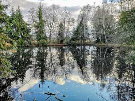 Naturgrundstück / Wochenendplatz - Auf den Waldalmen - ca. 6.450m²