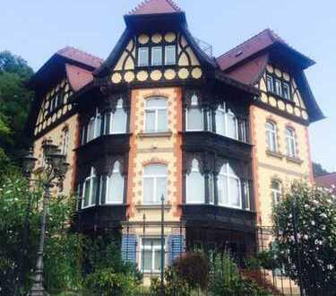 Wunderschöne Villa mit Nebenwohnhaus, Gartenhaus und großer Garage in Hanglage zum Fluss! SÜDLAGE!