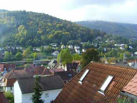 Ruhiges Appartement in Heidelberg-Ziegelhausen, zentrale Lage mit Blick ins Neckartal
