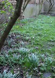 Erstbezug nach Renovierung! Maisonettewohnung mit eigenem Stadtgarten!