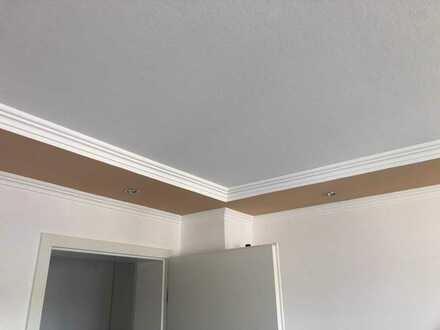 Neu renovierte 3-Zimmer-Wohnung in Buchloe mit schönem Alpblick