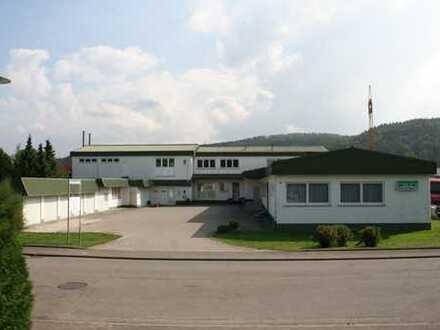 Produktions- / Lagerhallehalle mit Büroräumen in Rangendingen, provisionsfrei