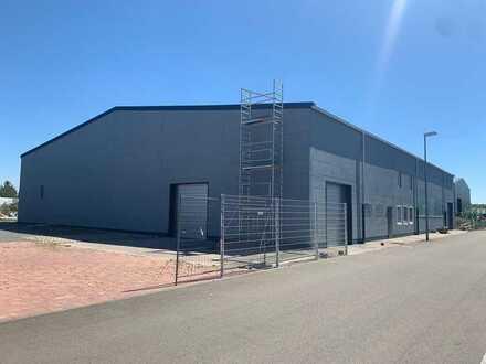 Modernisierte Kaltlagerhalle mit Freifläche und Büroräumen (Teilbar) | 2.600 m² Nutz- und Freifläche