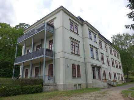 Sanierte 5-Zimmerwohnung mit Balkon, Terrasse und Gartennutzung in Radebeuler Bestlage