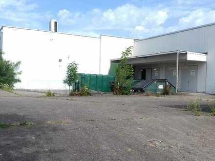 Gewerbegrundstück mit 2 Produktions- und Lagerhallen für Handel & produzierendes Gewerbe