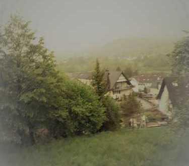 Sonniges Grundstück mit Panorama in Niedersteinbach