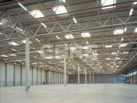 Kurzfristig verfügbare Hallenflächen // Rampen // GE-Gebiet