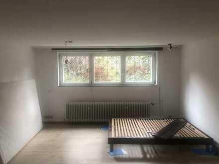 Geräumige und vollständig renovierte 1-Zimmer-Wohnung für Studenten oder Berufspendler in Mainz