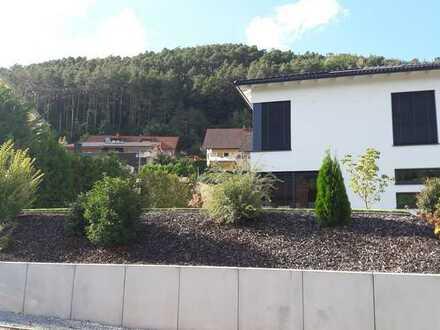 Hochwertige, energieeffiziente Stadtvilla im Dahner Felsenland. PROVISIONSFREI