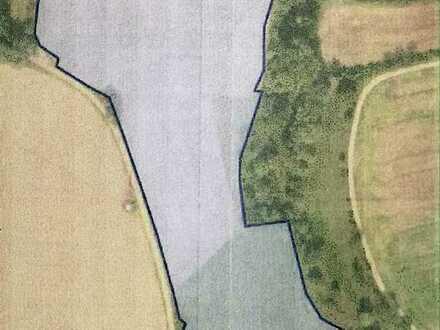 Landwirtschaftliche Grundstücke: Verkauf von Grünland und Acker