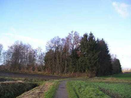 Gartenland im Randbereich der Kreisstadt