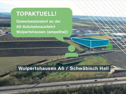 Neubau: Produktion & Logistik/Büro/Verkaufs- + Außenflächen, direkt an A6, provisionsfrei