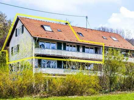 Schliengen: 4 Zi. Wohnung im Grünen inkl. Büro-/Gästezimmer und kleiner Landwirtschaftsfläche