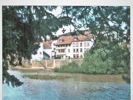 Sanierte 1,5-Zimmer-Wohnung mit Balkon in Bad Kreuznach