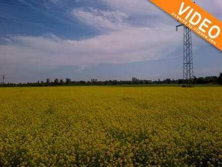 RSI-Invest bietet an: 10.680 m² Bauerwartungsland