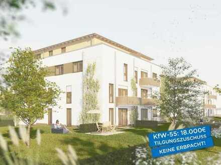 Attraktive Wohnung am Park mit Terrasse und Garten, 4½ Zimmer, KfW-55