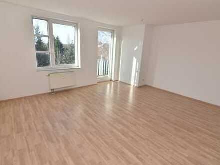 Perfekte Singlewohnung im grünen Schloßchemnitz gesucht?